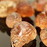 Gum Acacia Senegal